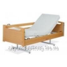 Кровати медицинские с фиксированной высотой Lojer ALLI F