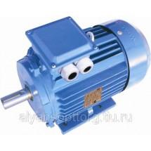 Трехфазные асинхронные электродвигатели АИС100L2, АИС100L6, АИС100LA4, АИС112М4