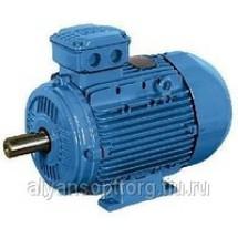 Электродвигатель взрывозащищенный 4ВР 80 В4